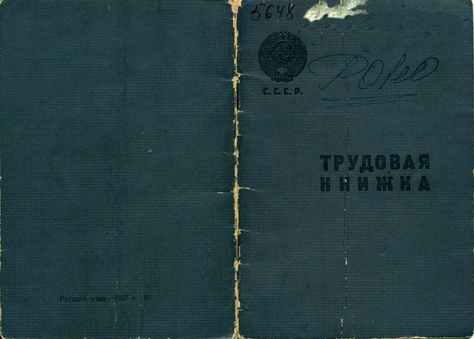 Виолетта 48 серия на русском